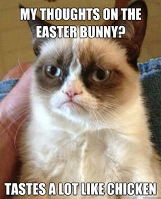 Grumpy Cat Easter Bunny easter easter quotes easter images easter quote happy easter happy easter. easter pictures funny easter quotes easter humor happy easter quotes quotes for easter
