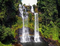 Bolavan plateau is a must visit in laos. be its coffee, its waterfalls, sensational greenery, low costs and lovely people, it is special and deserves many visits. Southeast Asia, Laos, Greenery, Waterfalls, Outdoor, Tray, Outdoors, Waterfall, Outdoor Living
