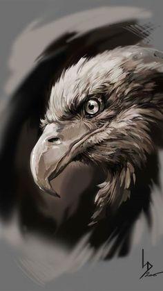 can taps ArtStation - Eagle-Owl, Dima Iorgachov Eagle Face, Bald Eagle, Eagle Bird, Bird Drawings, Animal Drawings, Drawing Animals, Drawings Of Eagles, Eagle Artwork, Eagle Wallpaper