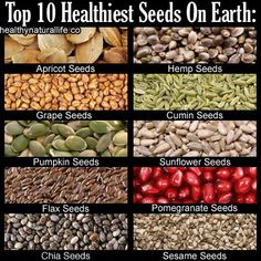 The Top 10 Healthiest Seeds On Earth - Herbs Info.... ** Learn even more by visiting the picture link