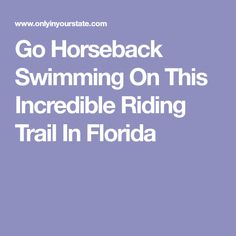 Go Horseback Swimming On This Incredible Riding Trail In Florida