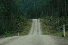 ...Norwegian woods...