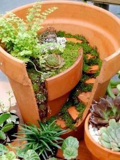 Fairy garden #Garden_Designs #Garden_Ideas #ideas_For_Garden_Decoration #Best_Gardening_Decor_Tips #Garden_Decor