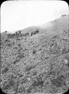 Prairie schooner crossing the mountains - (covered wagon, western, wild wild west, vintage photo)