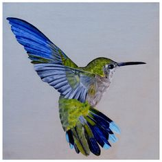 Hummingbird, Pascale Perry