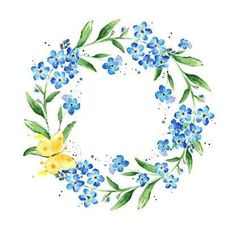Watercolor forget-me-not wreath. Natural round frame with blossom. - Watercolor forget-me-not wreath. Natural round frame with blossom royalty-free stock vector art You - Watercolor Flower Wreath, Floral Watercolor, Flower Circle, Flower Frame, Forget Me Not Tattoo, Corona Floral, Wreath Drawing, Art Impressions, Free Vector Art