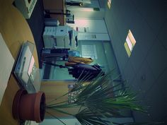 Shot from my desk - Simon.
