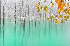 Голубое озеро. Хокайдо