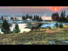 These western skies is what I fell in love with years ago. Chris sings it well.  Western Skies by Chris LeDoux