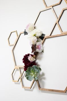 hexagon backdrop - photo Jessica Hill