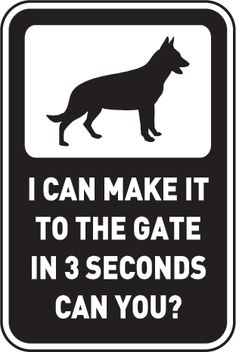 24x6 Beware of Dog Stripes White Premium Brushed Aluminum Sign CGSignLab 5-Pack