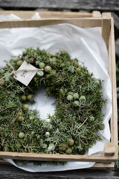 Beautiful green Christmas wreath.