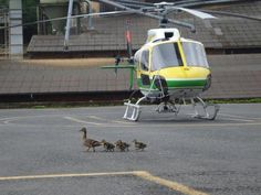 Snapshot of the week - greetings from Central Switzerland. Swiss Helicopter