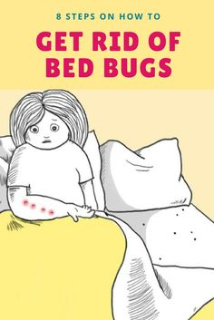 8 Steps on How to Get Rid of Bed Bugs - These creepy-crawly pests are everyone's worst nightmare! Here's how to identify them and get them OUT of your house