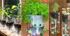 20 Creative Ways to Use an Old Bottle - DontPayFull