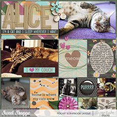So-Lazy by Stacia Hall - 365 Unscripted: Stitched Grids 5 by Traci Reed; A Purrfect Day Cards and A Purrfect Day by Sugary Fancy; Little Sew & Sew Alpha v6 by Erica Zane;  Custom Font