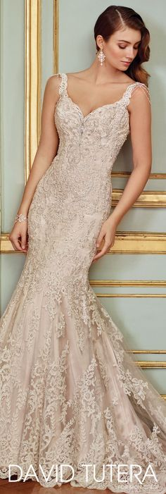 David Tutera for Mon Cheri Spring 2017 Collection & Style No. 117288 Ophira & sleeveless lace trumpet wedding dress with low scooped illusion back The post Vintage Lace & Beaded Trumpet Wedding Dress- 117288 Ophira appeared first on Wedding. Spring 2017 Wedding Dresses, Wedding Dresses With Straps, Sweetheart Wedding Dress, New Wedding Dresses, Bridal Dresses, Mermaid Wedding, Dresses Uk, Spring Dresses, Party Dresses