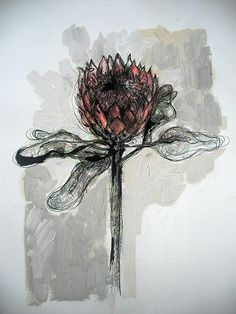 Title: Protea 4 Medium: Mixed media on paper: Printing ink and thinners/Chalk pastel/Pen and ink/Oil paint Size: x Flower Drawings, Printing Ink, Chalk Pastels, Etchings, Line Drawing, Flower Art, Vases, Mixed Media, Bloom