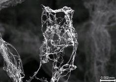 Aerographite / replaces aerogel as the world's lightest material / aerogel density of 1 mg/cm³ is mostly air and super strong / researchers at 2 German universities have created an even less dense material - aerographite Battlestar Galactica, Audiophile, Arduino, Apple Tv, Chemical Vapor Deposition, Light Rays, Materials Science, Future Tech, Science And Technology