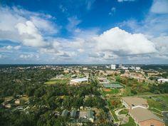 19 Florida A M University Ideas Florida Tallahassee Famu