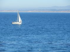 Sailing on the Monterey Bay Sanctuary is something everyone must do once.