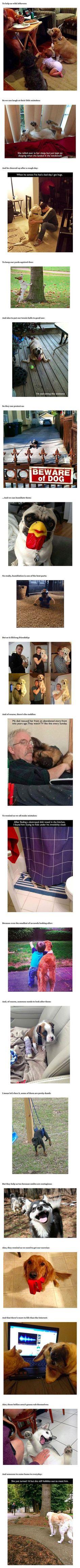 ¿Por qué los perros son lo mejor de todas las cosas .: