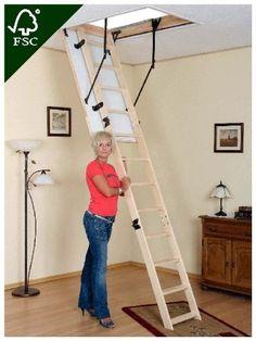 Loft Ladder Thermo Manual Pdf By Oman Attic Access Ni