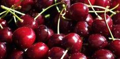 Awesome Benefits in Cherry Juice. This articles compares the benefits of tart cherry juice and black cherry juice. Cherry Tree From Seed, Growing Cherry Trees, Cherry Seeds, Growing Grapes, Planting Cherry Trees, Black Cherry Juice, Tart Cherry Juice, Cherry Wine, Cherry Cherry