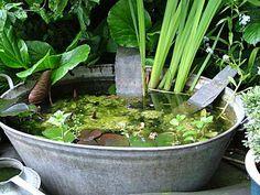 Life in a tin bath | North Farm notes's Weblog