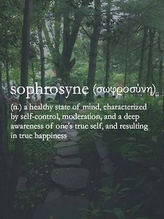 Sophosyne: a healthy state of mind, characterized by self-control and moderation. Hedonism doesn't have to mean unrestrained gluttony, hangovers, and self-indulgence that hurts relationships. Mindful hedonism that builds pleasure upon pleasure, and includes balance, can be the basis of a healthy, full lifelong love affair with life.