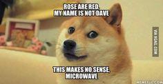 Wow. Such doge. Much poem.