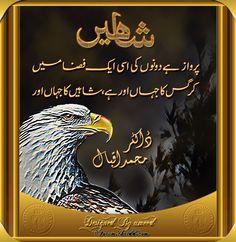 Iqbal Quotes, Sufi Quotes, Urdu Quotes, Poetry Quotes, Qoutes, Iqbal Poetry, Sufi Poetry, Iqbal Shayari, Eagle Images