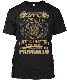 PANGALLO - I Never SaidIWas Perfect