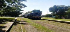 Con el proyecto que busca poner un tren en circunvalación podrían volver los trolebuses Diario El Día - La Plata, Buenos Aires, Argentina