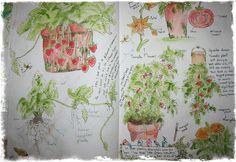 garden journal page | Flickr - Photo Sharing!