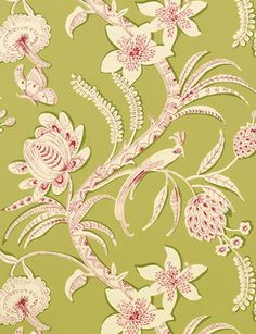 Ecuador wallpaper from Thibaut - 839-T-9250 - Green and Pink