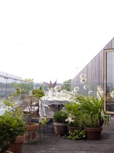 Potted plants would be great for our roof garden. Neutral tones, natural wood, green and white, very organic chic