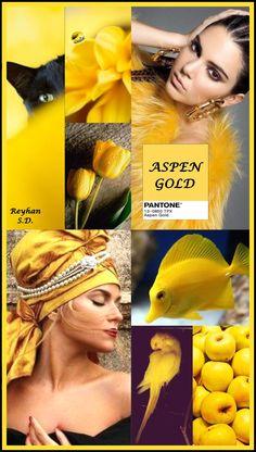 Aspen Gold -Pantone Spring Summer 2019 Color by Reyhan S D Color Trends, Color Combinations, Color Schemes, Mood Colors, Color Collage, Color Me Beautiful, Color Balance, Color Stories, Fashion Colours