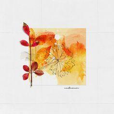 by Adryane  FALL Leaves