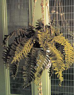 1960s Hanging Fern Plant Crochet Pattern