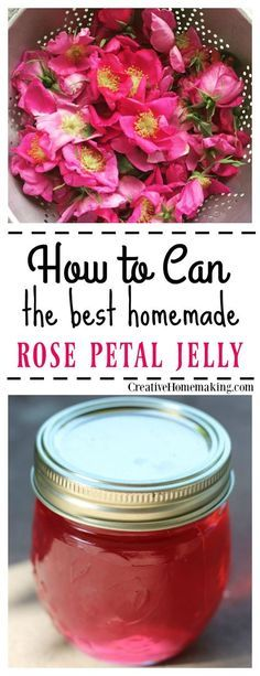 Easy recipe for canning rose petal jelly. Rose petal jelly tastes exactly like roses smell! It has a distinctly floral taste and is colored the same color as the roses with no added food coloring! Jelly Recipes, Jam Recipes, Canning Recipes, Cooker Recipes, Recipies, Curry Recipes, Recipes Dinner, Home Canning, Canning Tips
