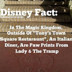 Disney Fact: An estimated one million bubbles were drawn by hand in the making of The Little Mermaid. Here are some Fun Disney Facts! Disney Nerd, Disney Fanatic, Disney Addict, Disney World Trip, Disney Vacations, Disney Love, Disney Stuff, Disney World Facts, Punk Disney
