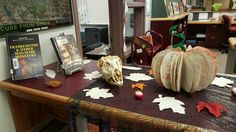 Book pumpkin and skull