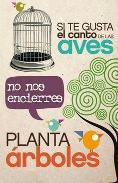 image uploaded by Carpe Diem, Trees To Plant, Creative, Poster, Image, Freedom, Vegan, Design, Environment