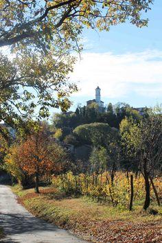 vineyards and borghi in autumn, Monferrato - www.casedicollina.it #Italy #Piedmont #Monferrato #Murisengo #Corteranzo #vineyards