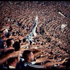 PAOK, funs in black Ultras Football, Thessaloniki, Football Fans, One Team, Soccer, In This Moment, Sports, Karma, Ranger