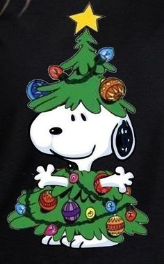 Ideas Christmas Wallpaper Funny Charlie Brown For 2019 Snoopy Love, Snoopy E Woodstock, Charlie Brown Und Snoopy, Peanuts Snoopy, Peanuts Christmas, Christmas Rock, Charlie Brown Christmas, Christmas Humor, Xmas