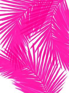 Palms Black Framed Art Print by caitlinworkman Black Framed Art, Framed Art Prints, Textures Patterns, Print Patterns, Estilo Kitsch, Wall Stencil Patterns, Paper Toy, Skateboard, Tropical