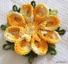 FLOR DE CONCHA - Passo a passo -- http://www.croche.com.br/flor-de-concha-passo-a-passo/