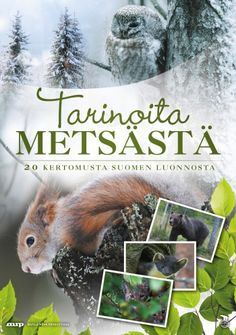 Tarinoita metsästä DVD. Tää olis ihana. Biology For Kids, Science Biology, Science For Kids, Science And Nature, Art And Hobby, Environmental Education, Early Childhood Education, Nature Crafts, Walking In Nature
